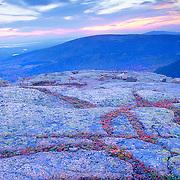 Autumn on Cadillac Mountain at sunset. Blue Hill Overlook. Acadia National park on Mount Desert Island. Maine