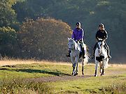 © Licensed to London News Pictures. 15/10/2011. Two women ride horses in the autumnal sunrise. Richmond, UK. Early morning in Richmond Park, Surrey today 15 October 2011. Temperatures are set to fall across the UK in the coming week as Autumn takes hold. Photo: Stephen Simpson/LNP