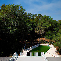 TAMPA, FL -- March 22, 2011 -- Green pool water fills the pool in a vacant home for sale in North Port, Fla., 2011.  A recent study showed that one and five homes in the state of Florida is vacant.