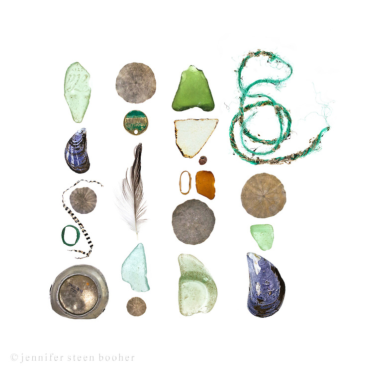 Left to right, top to bottom: Row 1: Coke bottle sea glass, Blue Mussel (Mytilus edulis), Sand dollar (Echinarachnius parma). paper scrap, lobster claw band, aluminum can base  Row 2: Sand dollar, pet ID tag, feather, sea glass, sand dollar  Row 3: sea glass, china fragment, Smooth Periwinkle (Littorina obtusata), sea glass, lobster claw band, sand dollar, sea glass  Row 4:  lobster trap rope,  sand dollar, sea glass, Blue Mussel