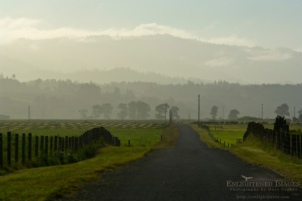 Small rural country lane road, near Ferndale, California