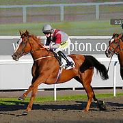 Kempton 4th September 2013