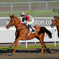 Jamaica Grande and William Carson winning the 5.30 race