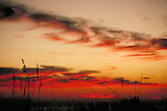 A collection of Landscape, Seascape, and Sunset images, photographed by Jeff Morgan.