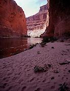 Redwall Cavern, along the Colorado River, Grand Canyon National Park, Arizona, USA