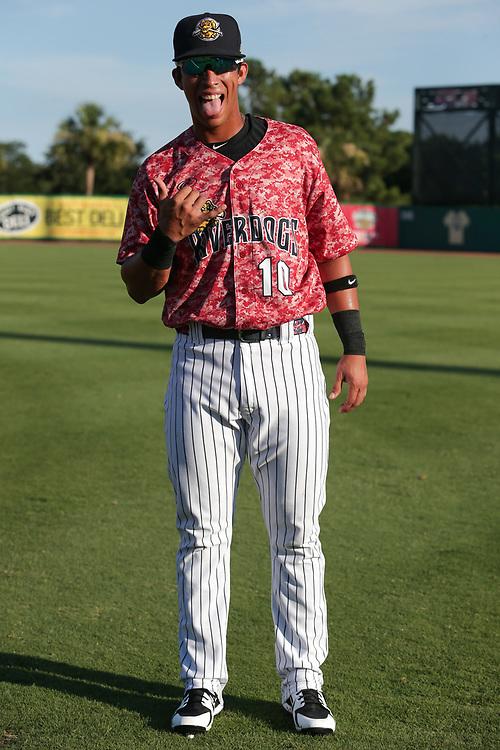 Augusta GreenJackets vs. Charleston RiverDogs at Joseph P. Riley Ballpark in Charleston, S.C. on Friday, July 6, 2018.<br /> Zach Bland/Charleston RiverDogs