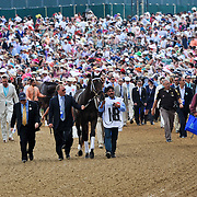 The Derby horse walkover from the barns to the paddock for the owners and trainers is Derby tradition at Churchill Downs on Kentucky Derby Day in Louisville, Kentucky May 5, 2012.