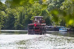 A padre steamer chugs its way along the River Thames at Old Windsor, Berkshire. Old Windsor, Berkshire, July 05 2019.