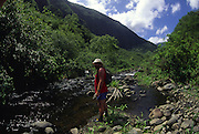 Hiker, Pelekunu Valley, Molokai, Hawaii<br />