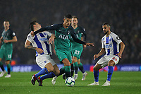 Football - 2018 / 2019 Premier League - Brighton and Hove Albion vs. Tottenham Hotspur<br /> <br /> Erik Lamela of Tottenham blocks Lewis Dunk of Brighton off with his arm at The Amex Stadium Brighton <br /> <br /> COLORSPORT/SHAUN BOGGUST