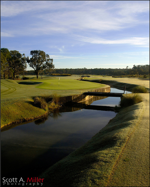 Grand Cypress 8th hole on New Course...                ©2005 Scott A. Miller