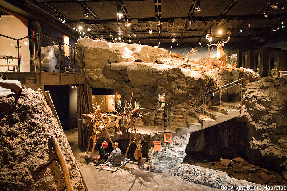 Jamtli er Jämtlands läns museum i Östersund. Anlegget består av et friluftsområde med historiske miljøer, og et innendørsmuseum som viser utstillinger om regionens historie fra steinalderen til i dag, samt kunst. Ett museum med 1000-åriga textilier från vikingatiden och ett friluftsmuseum med barnaktiviteter, tidsresor och historiska rollspel.