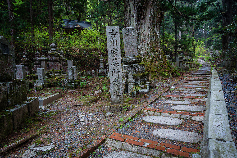 A path leads through the forest further into the cemetery.