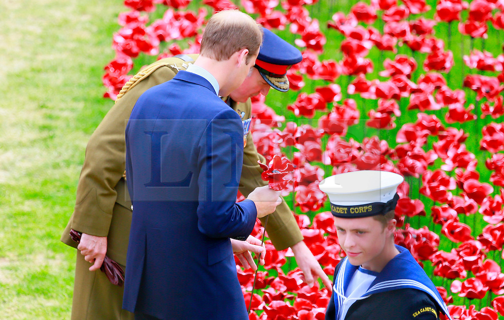 Catherine Duchess of Cambridge; Prince William Duke of Cambridge; Prince Harry, Ceramic Poppy installation - Blood Swept Lands and Seas of Red by artist Paul Cummins, commemorating the 100th anniversary of the outbreak of the First World War, Tower of London Moat, London UK, 05 August 2014, Photo by Rong Xu