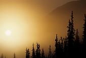 Alaska: Denali, Winter
