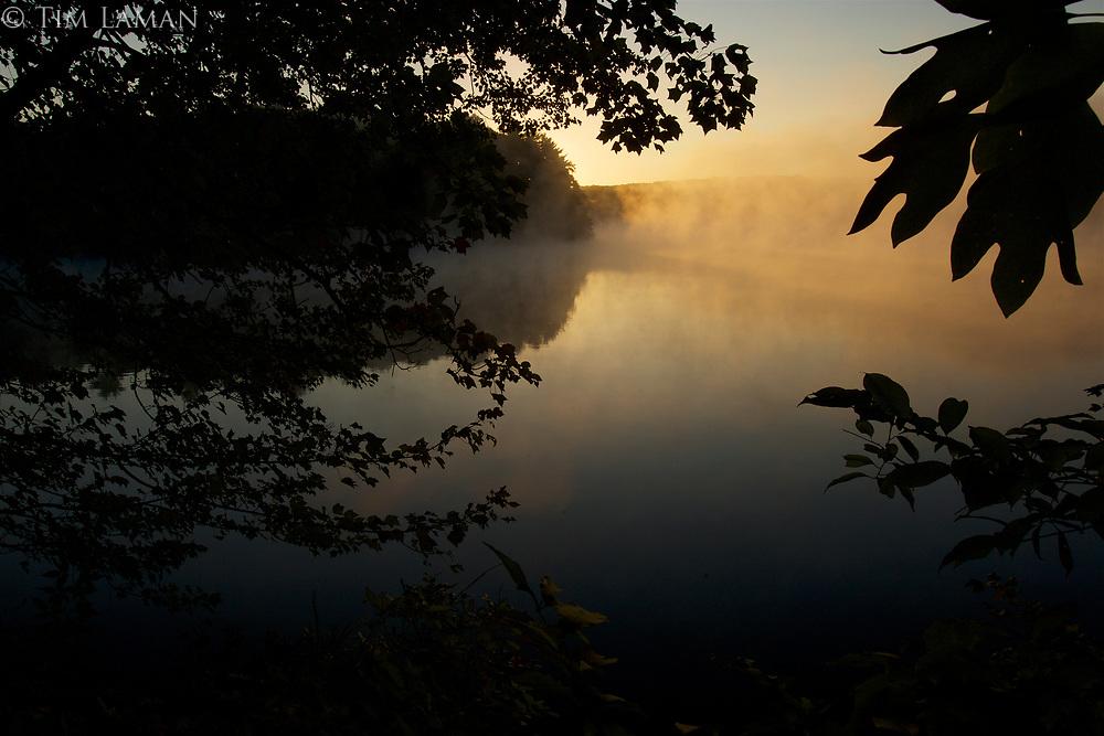 Misty Walden Pond at sunrise