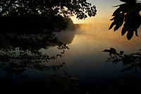 Misty Walden Pond at sunrise