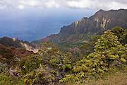 Waimea Canyon, Koke'e State Park, Kalalau Lookout, Kaua'i, Hawaii