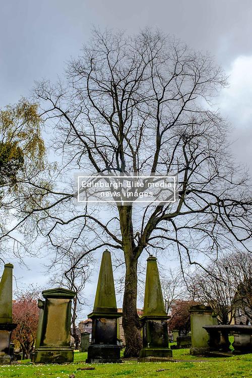 Grey Friars church yard in Edinburgh, Scotland<br /> <br /> (c) Andrew Wilson | Edinburgh Elite media