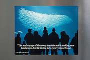 Photo magnet with Monterey Aquarium, Marcel Proust quote, fish, ocean life, blue sea, words to inspire, California, home art, fridge art, Central Coast.