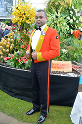 JOHNSON BEHARRY VC at the 2015 RHS Chelsea Flower Show at the Royal Hospital Chelsea, London on 18th May 2015.