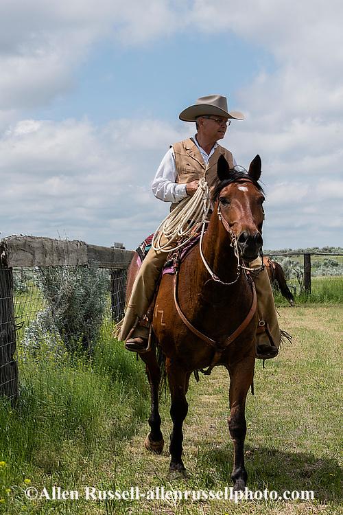 Rancher, John L. Moore, quarter horse, Simon, cattle branding, Dead Man Creek Corrals, Lazy TL Ranch, north of Miles City, Montana