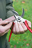 Tony Kirkham sharpening secateurs with a diamond sharpener<br /> <br /> <br /> <br /> photography &copy; Andrea Jones