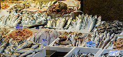 Fresh fish for sale on a market stall in Bologna, Italy.<br /> <br /> (c) Andrew Wilson | Edinburgh Elite media