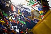 India - Darjeeling Color 2