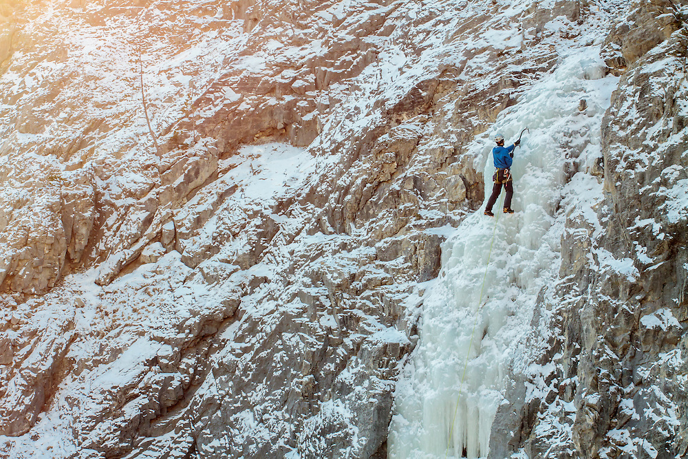 Ice Climbing Albatross