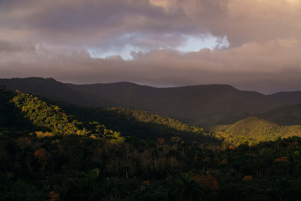 The landscape into the pineforest surrounding Farrallones in Eastern Cuba on Feb. 05, 2016.