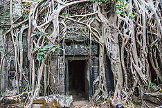 Cambodia - Forests to Temples