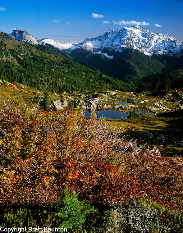 Mt. Shuksan, North Cascades, Yellow Aster Butte, Mt. Baker Wildernes, Fall