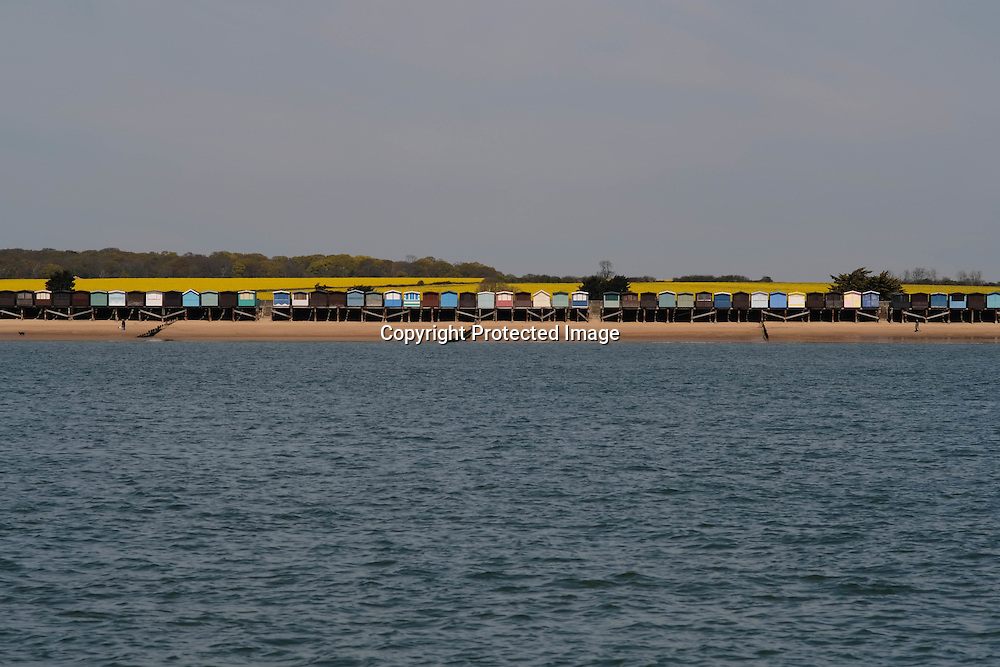 Beach huts at Clacton on Sea vie with the rape fields for the most eye-catching colour