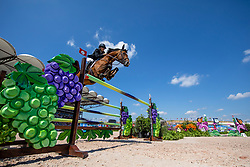 MCINTOSH Samantha (NZL), Ceck in<br /> Tryon - FEI World Equestrian Games™ 2018<br /> 2. Qualifikation Teamwertung 2. Runde<br /> 21. September 2018<br /> © www.sportfotos-lafrentz.de/Stefan Lafrentz