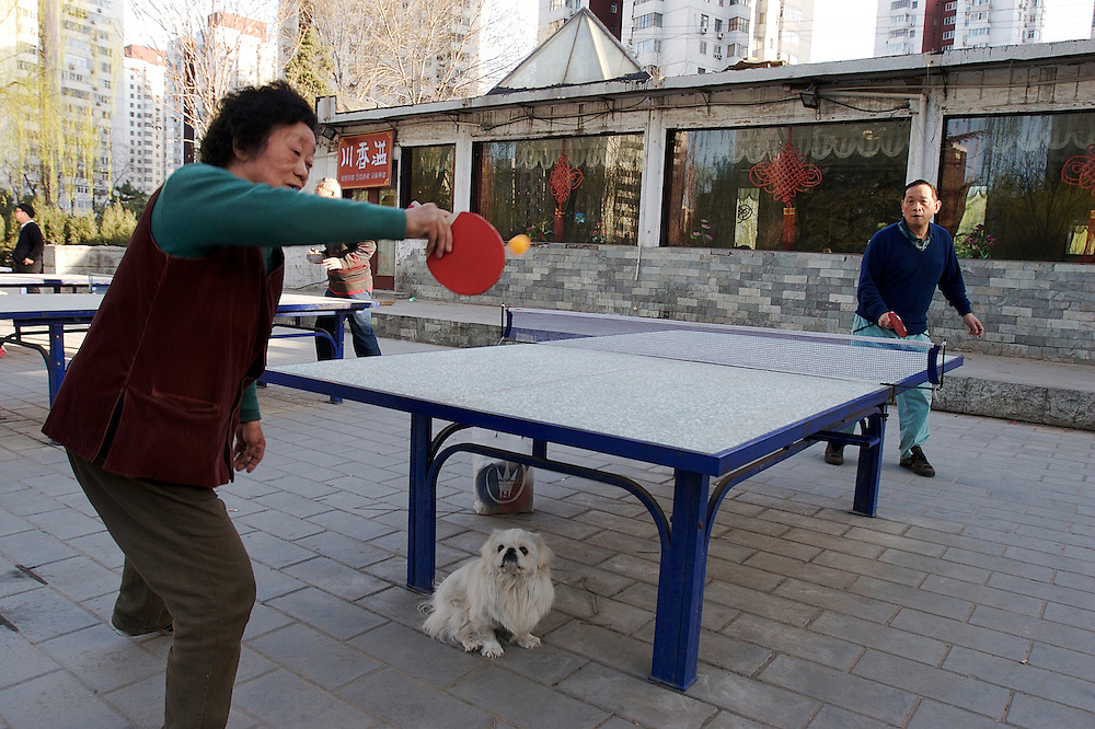 Afternoon table tennis in a Yayuncun area park of Beijing, China.