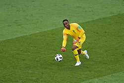 MOSCOW, RUSSIA - Tuesday, June 26, 2018: France's goalkeeper Steve Mandanda during the FIFA World Cup Russia 2018 Group C match between Denmark and France at the Luzhniki Stadium. (Pic by David Rawcliffe/Propaganda)