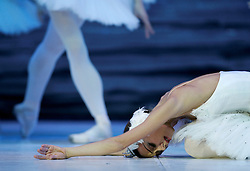 "Bolshoi ballerina Yelena Andrienko dances during a performance of Tchaikovsky's ""Swan Lake"" with the State Classic Ballet Theatre of Russia at the Mediterranean Conference Centre in Valletta, April 19, 2007.  The ballet runs until April 23. .REUTERS/Darrin Zammit Lupi (MALTA).MALTA OUT"