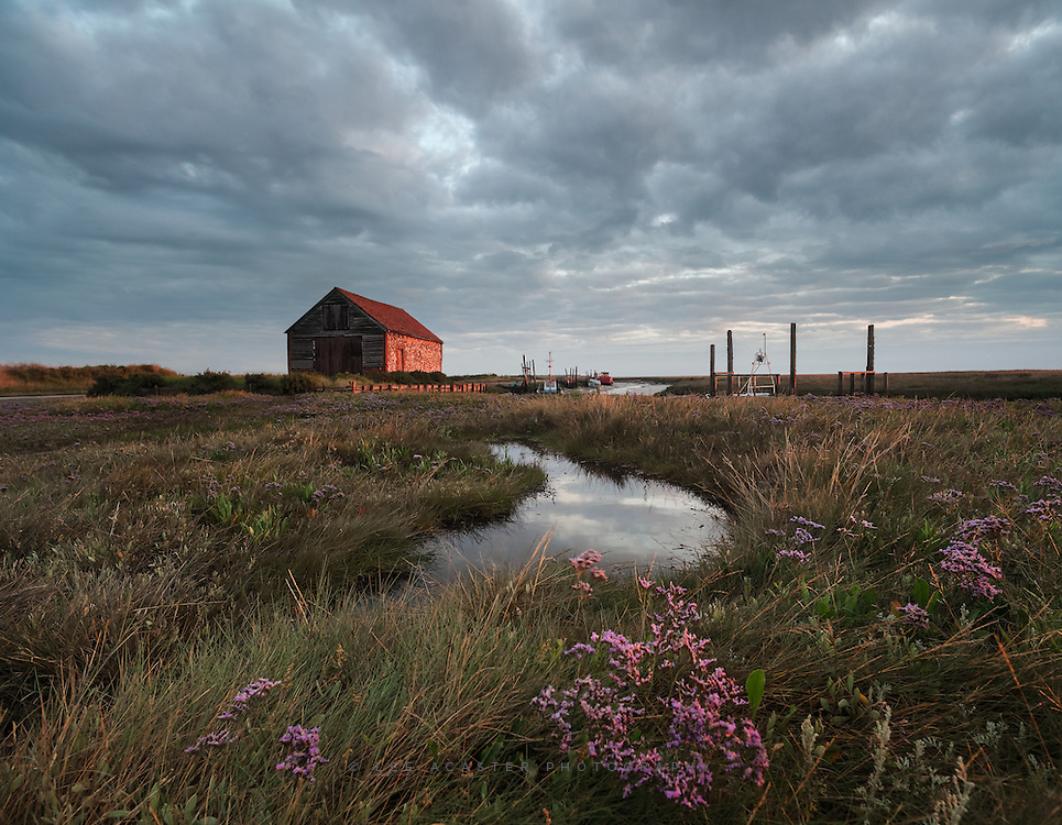 After a first trip to Thornham the other day, I just had to go staright back for a sunrise to get some light on the sea lavender in front of the coal barn.