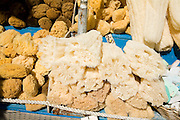 Natural sponges, Rhodes, Greece