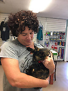"Lost Cat Reunites With Her Owner After 15 Years Apart <br /> <br /> Three weeks ago, Tori Takayesu got a call from the Maui Humane Society shelter about her lost cat, but she had no idea what they were talking about.<br /> <br /> ""I was like, 'What cat?'"" said owner ToriTakayesu . ""And they said, 'Oh, we have your tortoiseshell tabby, and she's fine, and we're waiting for you to come by.' But I hadn't had a cat in 15 years.""<br /> Takayesu figured the shelter had made a mistake, and that someone — the cat's real owner — would eventually claim her. But no one did, and the shelter kept calling Takayesu. Over the weekend, an animal control officer even visited Takayesu's house to remind her about the cat waiting at the shelter.<br /> <br /> ""They said it was a senior cat,"" Takayesu said. ""I was concerned that nobody would adopt her, and she'd be euthanized or something. I didn't want that on my conscience, so I decided to pull her out, whomever she belonged to.""<br /> <br /> Four days after the initial call from the shelter, Takayesu went to collect the mystery cat. The staff delivered the cat to Takayesu in a carrier. When Takayesu opened it, she got the biggest surprise.<br /> <br /> ""I opened it up, and I was like, 'Oh my god! That's my cat,'"" Takayesu said. ""It was crazy."" The cat turned out to be James, a female cat Takayesu and her family had owned 15 years ago. She was named after a character in her son's favorite show, Thomas the Tank Engine & Friends. James the cat had first lived with the family in Kula, on the Hawaiian island of Maui, then moved with them 10 miles away to another part of Maui, Makawao.<br /> <br /> ""She was fine for a month [in Makawao] — she had the same routine,"" Takayesu said. ""She'd come in at night, and during the day, she'd wander in and out. Then we noticed she didn't come in at night. We went looking for her and couldn't find her.""<br /> <br /> The family searched for a month, driving around each evening to look for her. They even went back to Kula, to see if she'd gotten disoriented and wandered back home. But she"