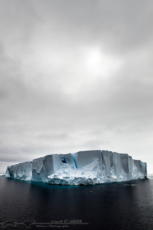 Tabular Iceberg adrift. Antarctica.