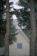 House and trees in winter through window