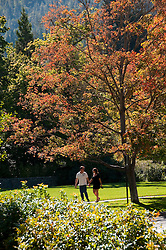 Lithia park in Ashland, Oregon.Photo copyright Lee Foster.  Photo # oregon-ashland-oregon105651