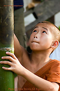 A young Buddhist monk is making a bamboo rocket at a temple in Muang Sing, Northern Laos.