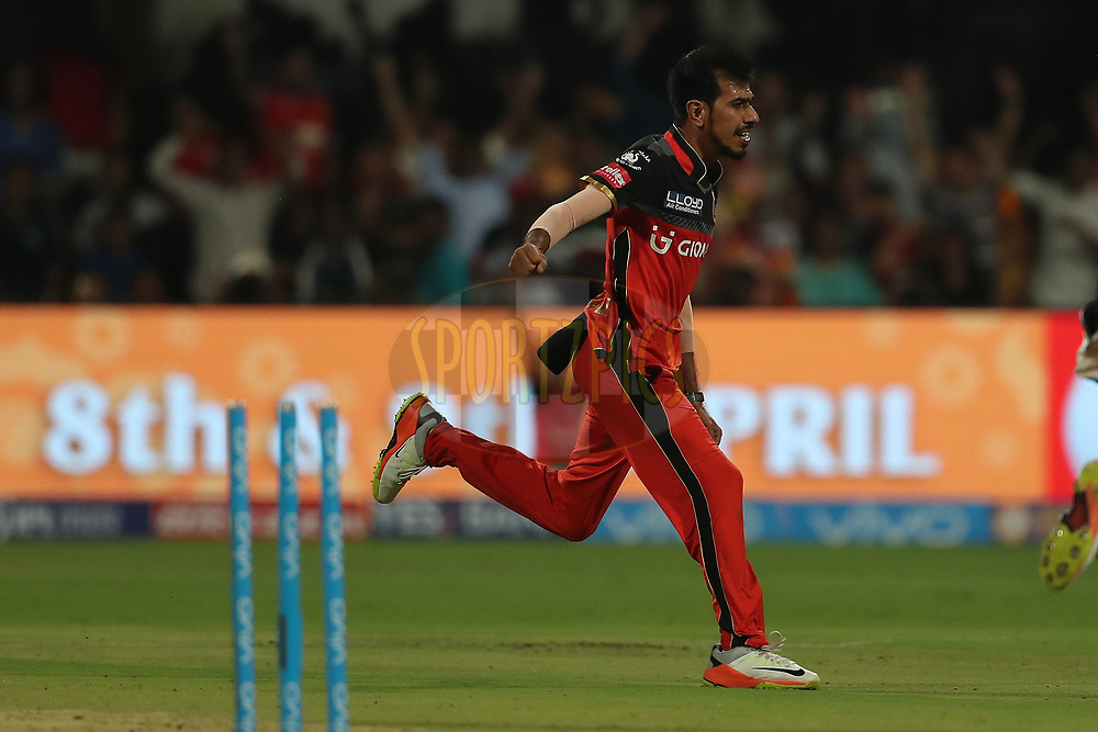 Yuzvendra Chahal of the Royal Challengers Bangalore celebrates the wicket of Carlos Brathwaite of the Delhi Daredevils during match 5 of the Vivo 2017 Indian Premier League between the Royal Challengers Bangalore and the Delhi Daredevils held at the M.Chinnaswamy Stadium in Bangalore, India on the 8th April 2017<br /> <br /> Photo by Ron Gaunt - IPL - Sportzpics