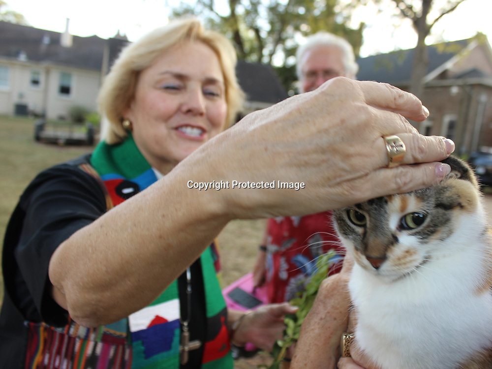 RAY VAN DUSEN/BUY AT PHOTOS.MONROECOUNTYJOURNAL.COM<br /> The Rev. Sandra DePriest of St. John's Episcopal Church blesses Bo Peep during the church's Blessing of the Pets ceremony Sunday, Oct. 2. The service was also a feast day for St. Francis, a man who gave up his riches to be one with nature. St. Francis had a special place in his heart for animals.