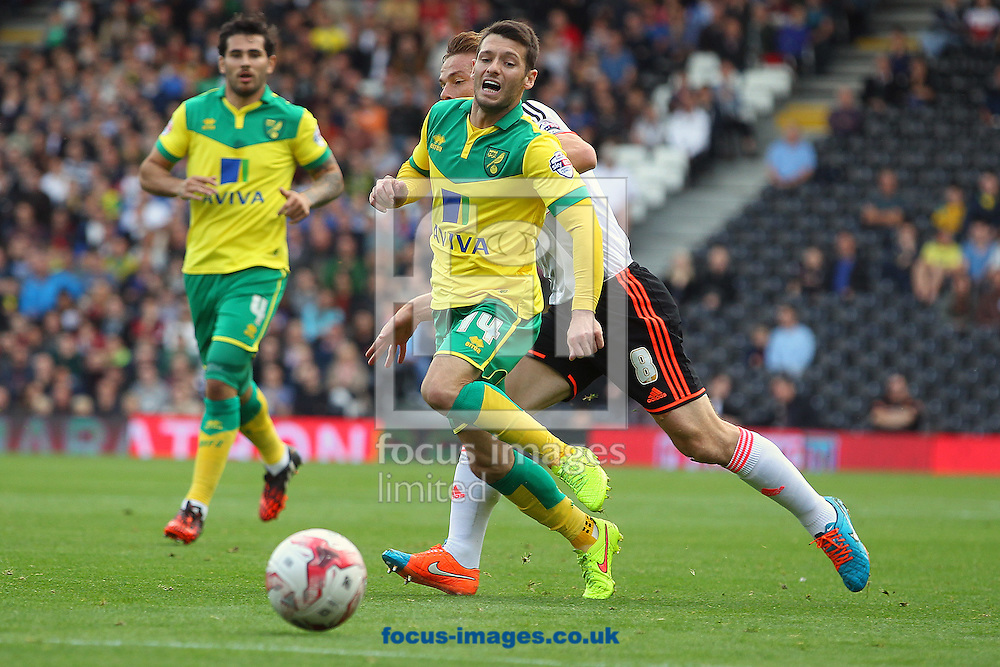 Wes Hoolahan of Norwich and Scott Parker of Fulham in action during the Sky Bet Championship match at Craven Cottage, London<br /> Picture by Paul Chesterton/Focus Images Ltd +44 7904 640267<br /> 18/10/2014