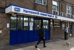 """Angus"" the ginger tom cat who was discovered impaled on three steel fence spikes in North London continues to recover at the RSPCA's Harmsworth Animal Hospital in north London, following lifesaving surgery to remove the 20mm thick spikes from his body. PICTURED: Harmsworth Animal Hospital in north London. March 14 2018."