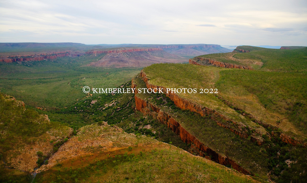 Soft early morning lights up the Carr Boyd Range in the East Kimberley in the Wet Season.